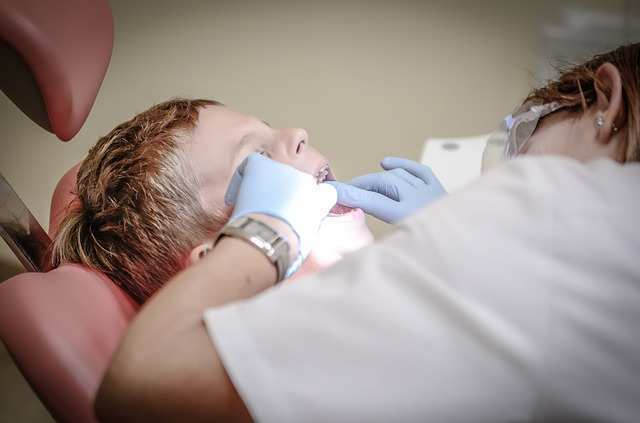 dentist-428646