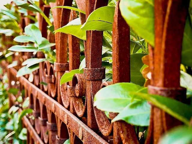 fence-1079803