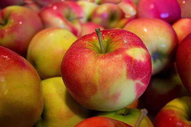 apples-490474