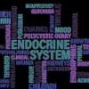 体質改善ステップ3、内分泌系サポート