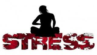 ストレスは、生きてる限り避けられないものと覚悟するだけでずいぶん違うらしい。