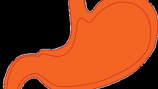 胃がん検診(胃内視鏡検査)初体験