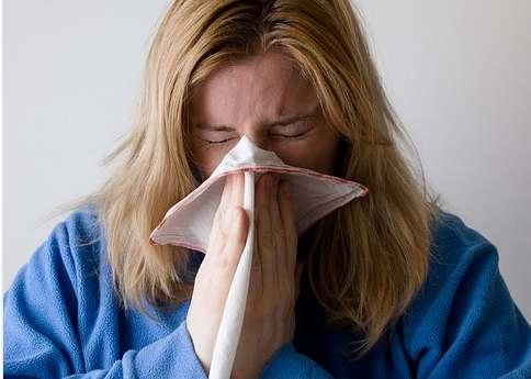 allergy1440