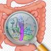 腸内悪玉菌は断食しても減らない!? 腸内悪玉菌を増やし過ぎない方法